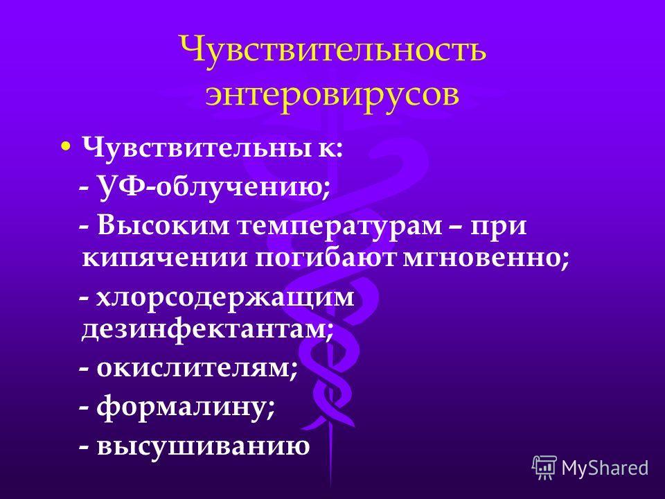 Чувствительность энтеровирусов Чувствительны к: - УФ-облучению; - Высоким температурам – при кипячении погибают мгновенно; - хлорсодержащим дезинфектантам; - окислителям; - формалину; - высушиванию
