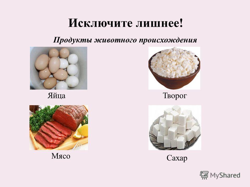 Исключите лишнее! Мясо Яйца Сахар Творог Продукты животного происхождения