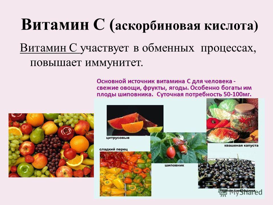 Витамин С ( аскорбиновая кислота) Витамин С участвует в обменных процессах, повышает иммунитет. Основной источник витамина C для человека - свежие овощи, фрукты, ягоды. Особенно богаты им плоды шиповника. Суточная потребность 50-100 мг.
