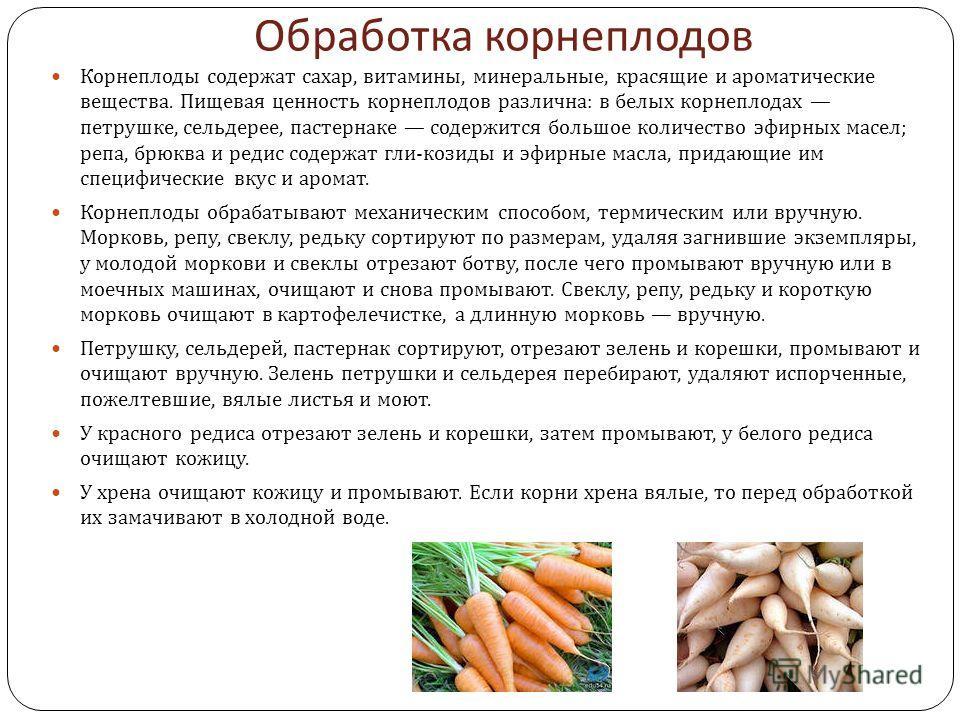 Обработка корнеплодов Корнеплоды содержат сахар, витамины, минеральные, красящие и ароматические вещества. Пищевая ценность корнеплодов различна : в белых корнеплодах петрушке, сельдерее, пастернаке содержится большое количество эфирных масел ; репа,
