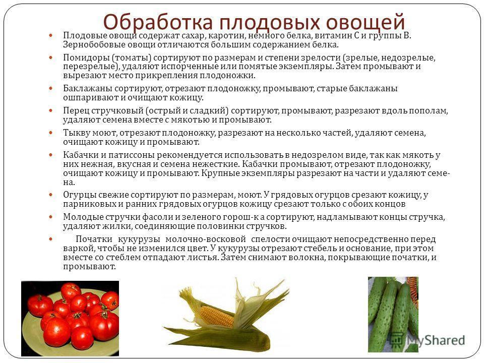 Обработка плодовых овощей Плодовые овощи содержат сахар, каротин, немного белка, вита  мин С и группы В. Зернобобовые овощи отличаются большим содер  жанием белка. Помидоры ( томаты ) сортируют по размерам и степени зре  лости ( зрелые, недозрелые