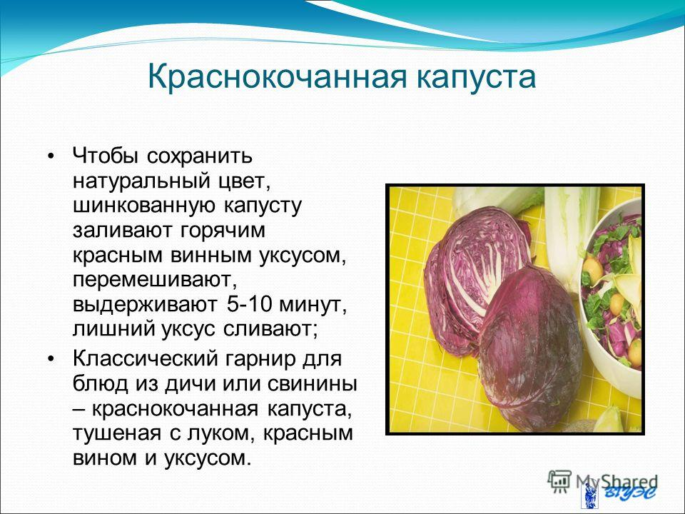 Краснокочанная капуста Чтобы сохранить натуральный цвет, шинкованную капусту заливают горячим красным винным уксусом, перемешивают, выдерживают 5-10 минут, лишний уксус сливают; Классический гарнир для блюд из дичи или свинины – краснокочанная капуст
