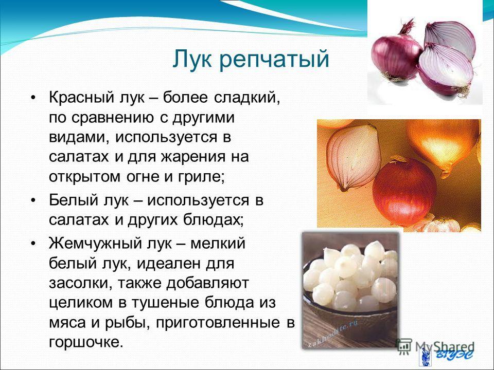 Лук репчатый Красный лук – более сладкий, по сравнению с другими видами, используется в салатах и для жарения на открытом огне и гриле; Белый лук – используется в салатах и других блюдах; Жемчужный лук – мелкий белый лук, идеален для засолки, также д