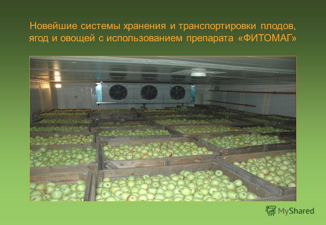 Новейшие системы хранения и транспортировки плодов, ягод и овощей с использованием препарата «ФИТОМАГ»