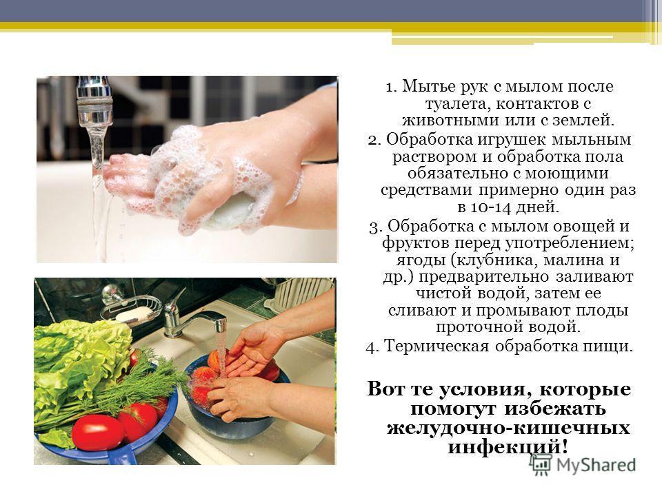 1. Мытье рук с мылом после туалета, контактов с животными или с землей. 2. Обработка игрушек мыльным раствором и обработка пола обязательно с моющими средствами примерно один раз в 10-14 дней. 3. Обработка с мылом овощей и фруктов перед употреблением