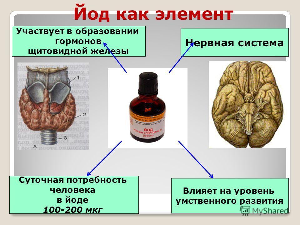 Нервная система Суточная потребность человека в йоде 100-200 мкг Влияет на уровень умственного развития Участвует в образовании гормонов щитовидной железы Йод как элемент