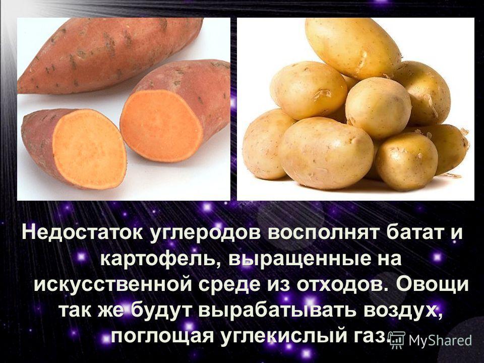Недостаток углеродов восполнят батат и картофель, выращенные на искусственной среде из отходов.Овощи так же будут вырабатывать воздух, поглощая углекислый газ. Недостаток углеродов восполнят батат и картофель, выращенные на искусственной среде из отх