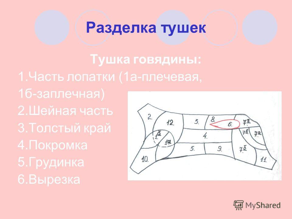 Разделка тушек Тушка говядины: 1. Часть лопатки (1 а-плечевая, 1 б-заплечная) 2. Шейная часть 3. Толстый край 4. Покромка 5. Грудинка 6.Вырезка