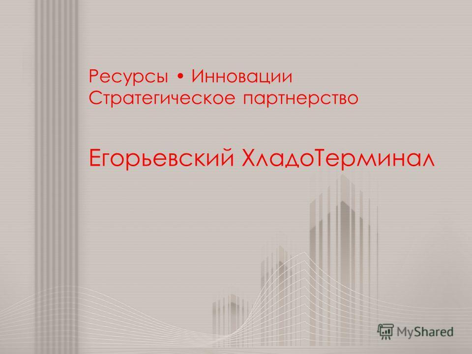 Ресурсы Инновации Стратегическое партнерство Егорьевский Хладо Терминал