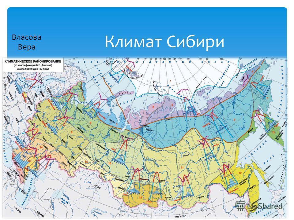 Климат Сибири Власова Вера