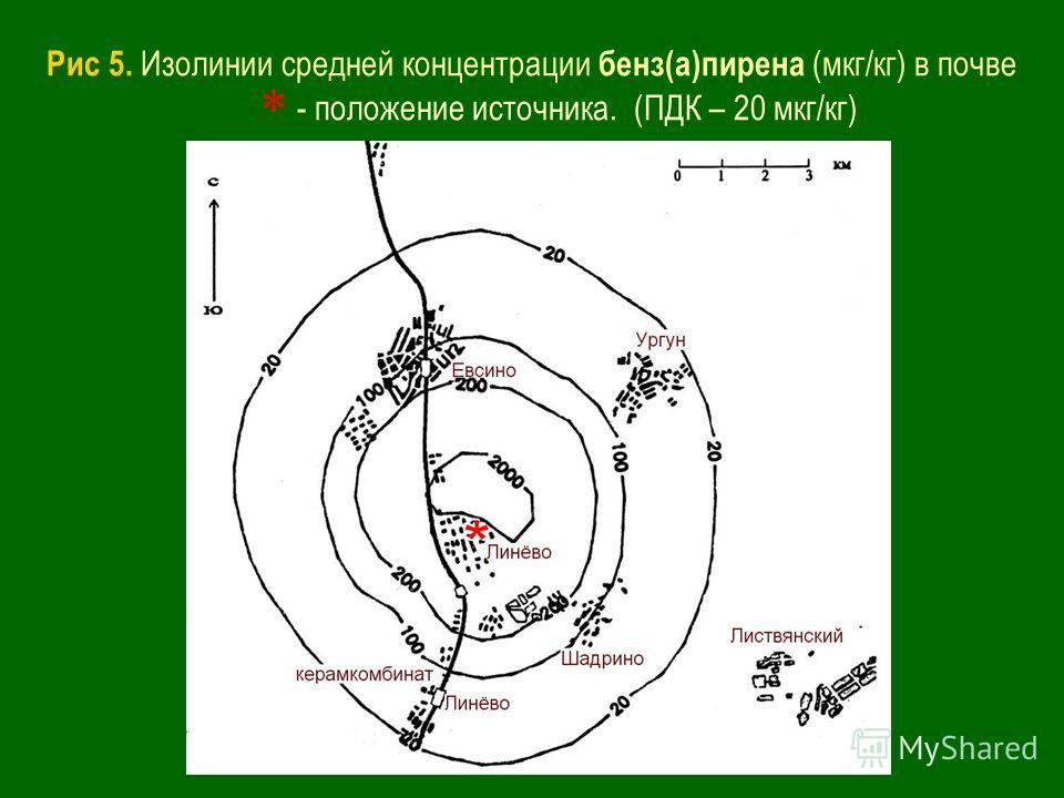 Рис 5. Изолинии средней концентрации бенз(а)пирена (мкг/кг) в почве - положение источника. (ПДК – 20 мкг/кг)