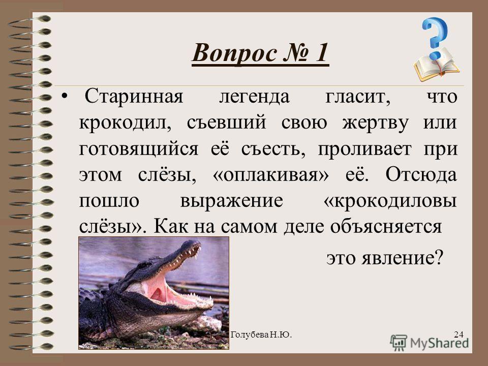 Голубева Н.Ю.24 Вопрос 1 Старинная легенда гласит, что крокодил, съевший свою жертву или готовящийся её съесть, проливает при этом слёзы, «оплакивая» её. Отсюда пошло выражение «крокодиловы слёзы». Как на самом деле объясняется это явление?