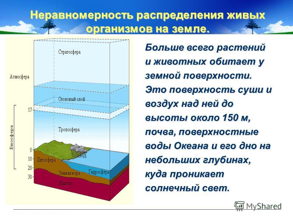 Неравномерность распределения живых организмов на земле. Больше всего растений и животных обитает у земной поверхности. Это поверхность суши и воздух над ней до высоты около 150 м, почва, поверхностные воды Океана и его дно на небольших глубинах, куд