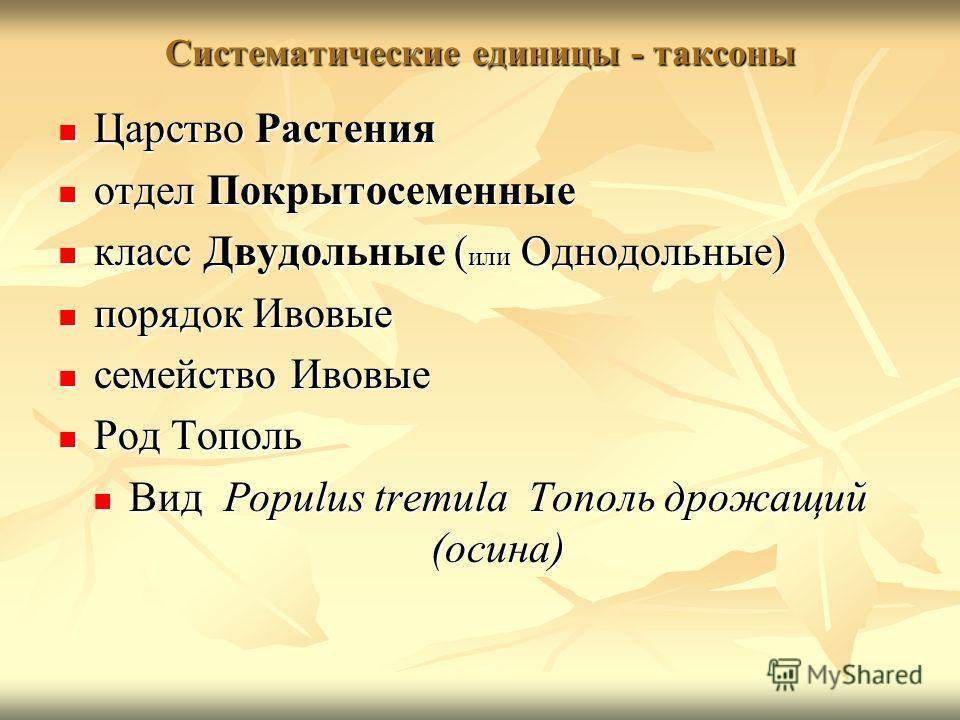 Систематические единицы - таксоны Царство Растения Царство Растения отдел Покрытосеменные отдел Покрытосеменные класс Двудольные ( или Однодольные) класс Двудольные ( или Однодольные) порядок Ивовые порядок Ивовые семейство Ивовые семейство Ивовые Ро