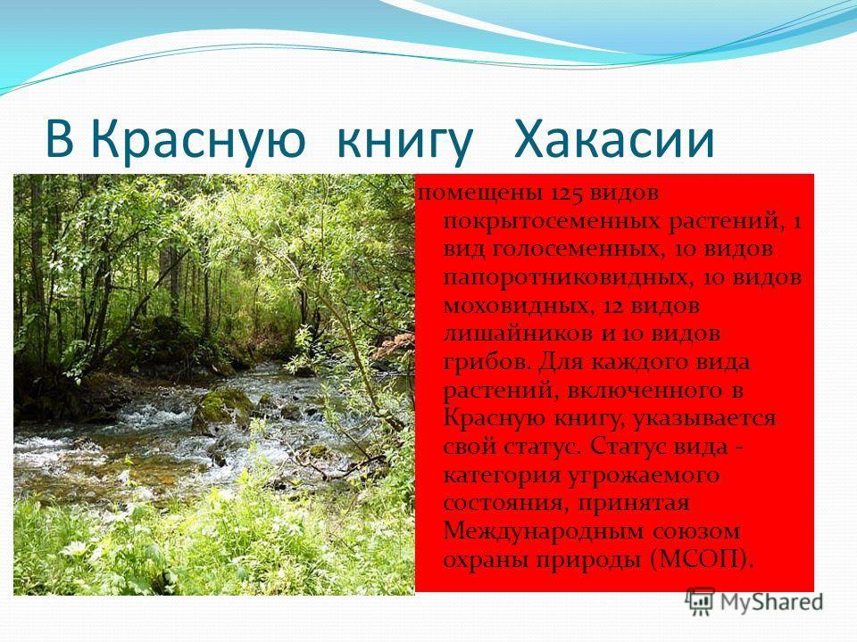 В Красную книгу Хакасии помещены 125 видов покрытосеменных растений, 1 вид голосеменных, 10 видов папоротниковидных, 10 видов моховидных, 12 видов лишайников и 10 видов грибов. Для каждого вида растений, включенного в Красную книгу, указывается свой