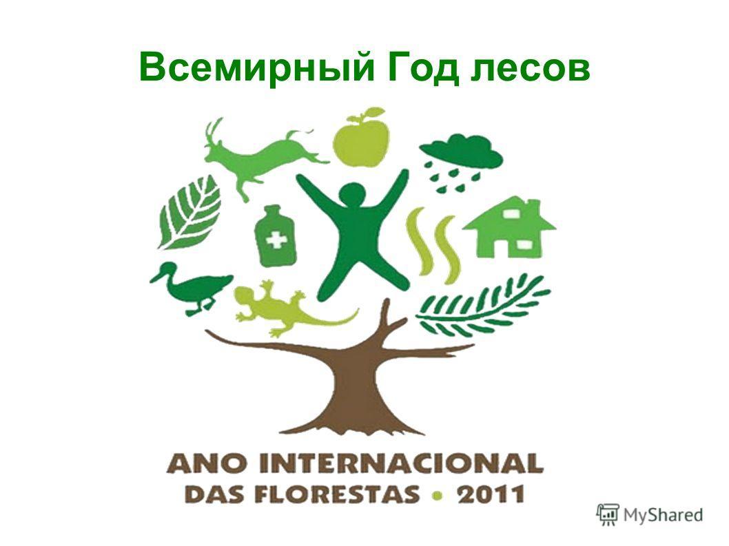 Всемирный Год лесов