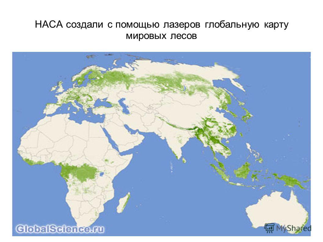 НАСА создали с помощью лазеров глобальную карту мировых лесов