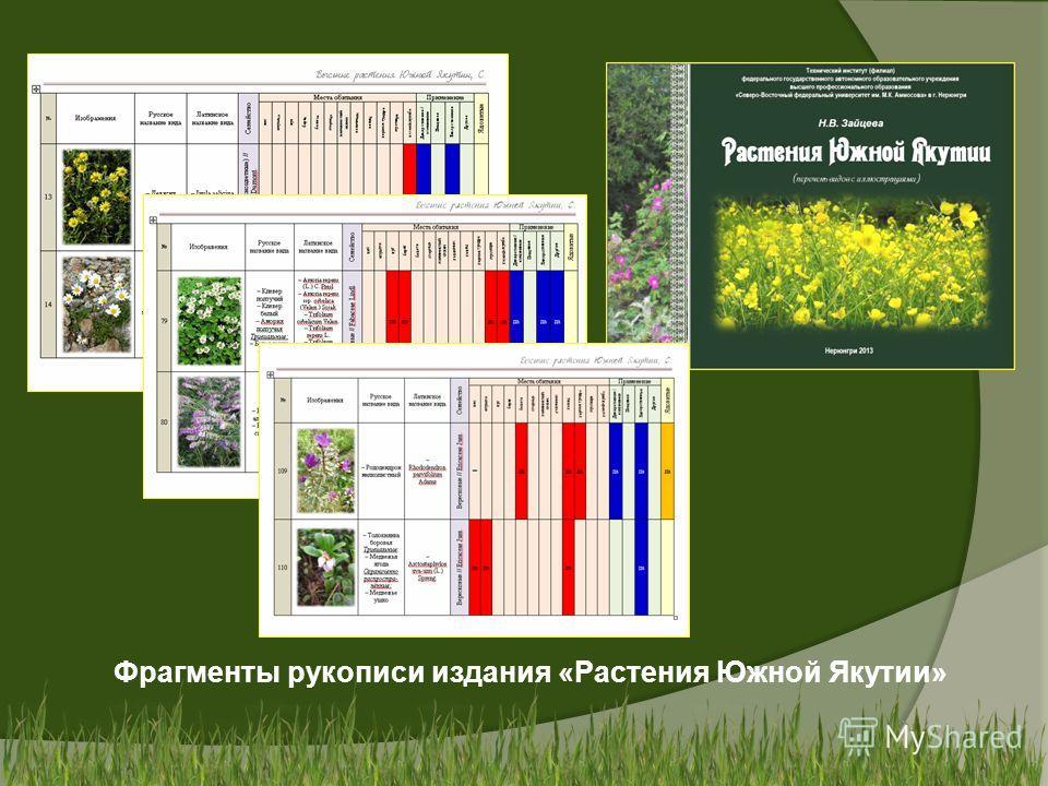 Фрагменты рукописи издания «Растения Южной Якутии»