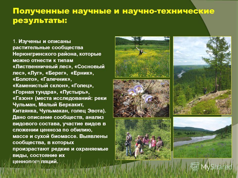 Полученные научные и научно-технические результаты: 1. Изучены и описаны растительные сообщества Нерюнгринского района, которые можно отнести к типам «Лиственничный лес», «Сосновый лес», «Луг», «Берег», «Ерник», «Болото», «Галечник», «Каменистый скло