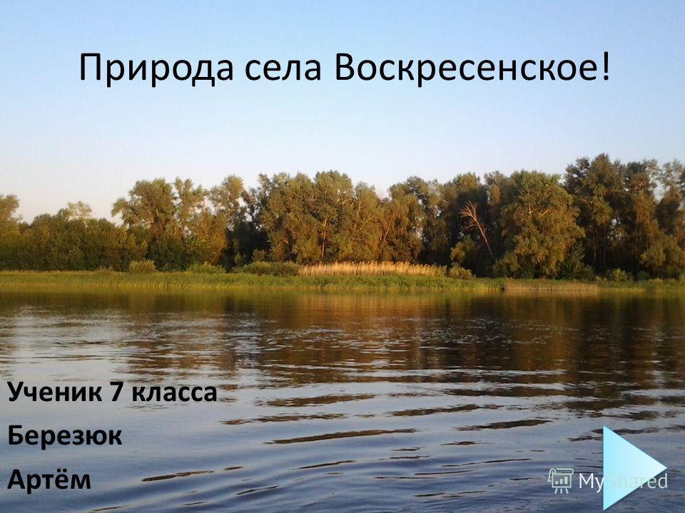 Природа села Воскресенское! Ученик 7 класса Березюк Артём