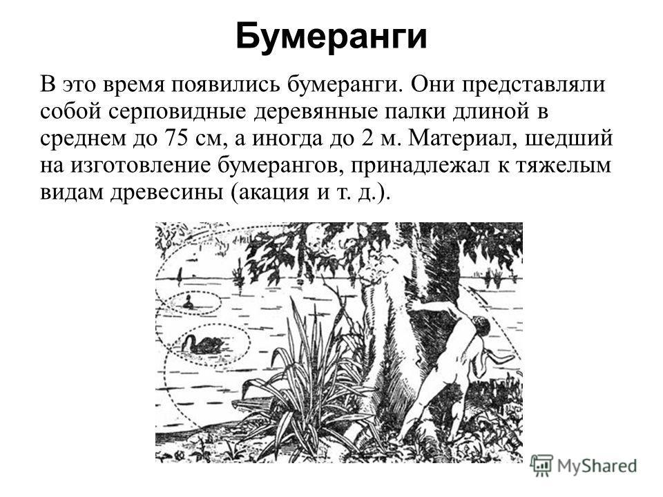 Бумеранги В это время появились бумеранги. Они представляли собой серповидные деревянные палки длиной в среднем до 75 см, а иногда до 2 м. Материал, шедший на изготовление бумерангов, принадлежал к тяжелым видам древесины (акация и т. д.).