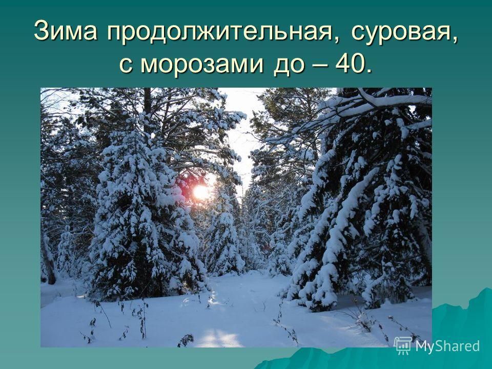 Зима продолжительная, суровая, с морозами до – 40.