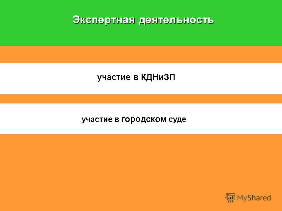 Экспертная деятельность участие в КДНиЗП участие в городском суде