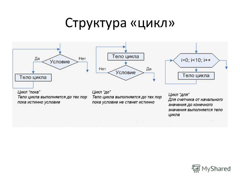 Структура «цикл»