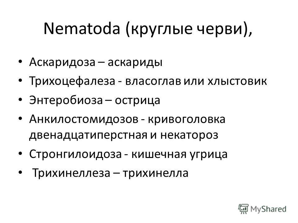 Nematoda (круглые черви), Аскаридоза – аскариды Трихоцефалеза - власоглав или хлыстовки Энтеробиоза – острица Анкилостомидозов - кривоголовка двенадцатиперстная и некатороз Стронгилоидоза - кишечная угрица Трихинеллеза – трихинелла