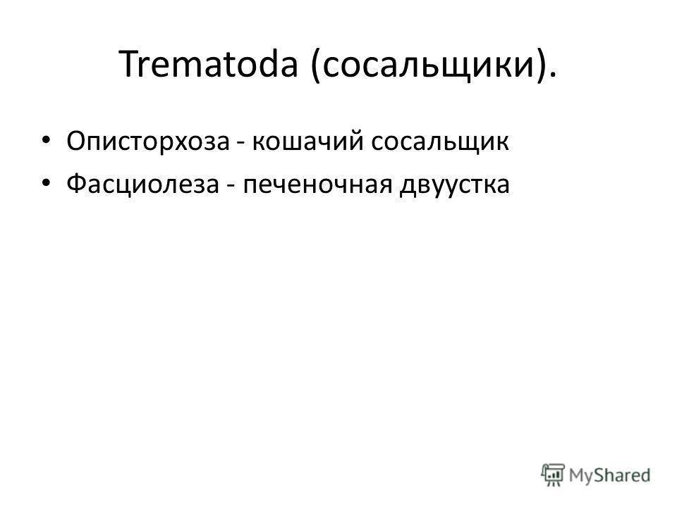 Trematoda (сосальщики). Описторхоза - кошачий сосальщик Фасциолеза - печеночная двуустка