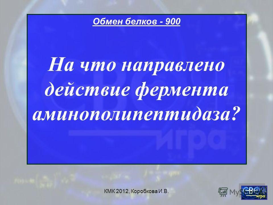 КМК 2012, Коробкова И.В. Обмен белков - 900 На что направлено действие фермента аминополипептидаза?