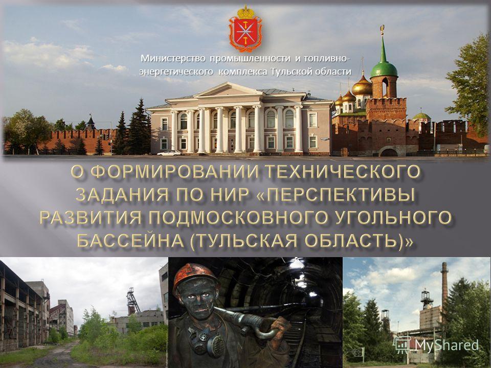 Министерство промышленности и топливно- энергетического комплекса Тульской области
