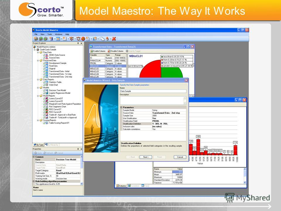 Model Maestro: The Way It Works