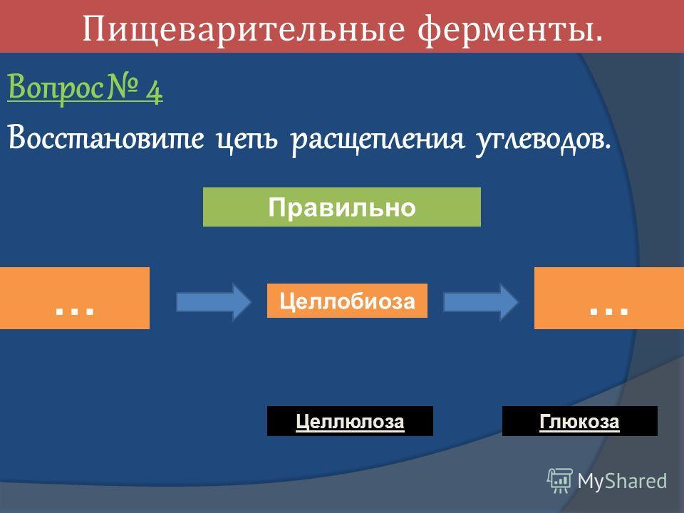 Пищеварительные ферменты. Вопрос 4 Восстановите цепь расщепления углеводов. … Целлобиоза … Целлюлоза Глюкоза Правильно