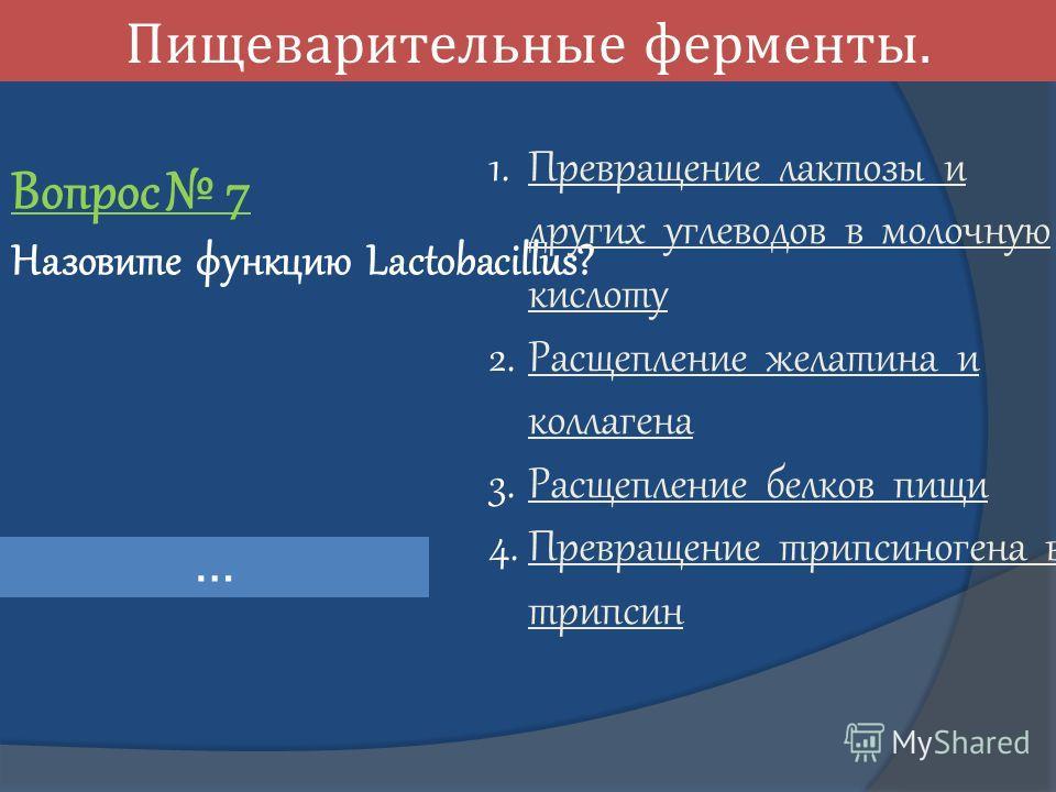 Пищеварительные ферменты. Вопрос 7 Назовите функцию Lactobacillus? … 1. Превращение лактозы и других углеводов в молочную кислоту Превращение лактозы и других углеводов в молочную кислоту 2. Расщепление желатина и коллагена Расщепление желатина и кол