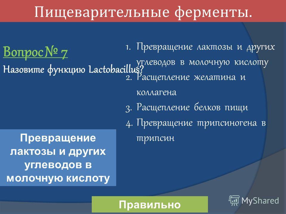 Пищеварительные ферменты. Вопрос 7 Назовите функцию Lactobacillus? Превращение лактозы и других углеводов в молочную кислоту 1. Превращение лактозы и других углеводов в молочную кислоту 2. Расщепление желатина и коллагена 3. Расщепление белков пищи 4