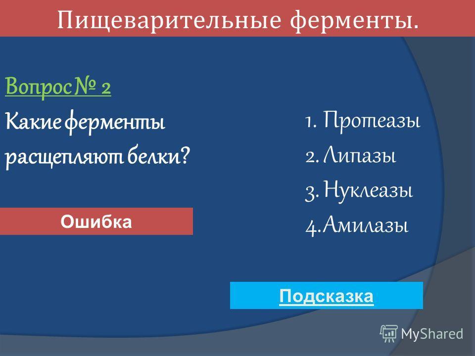 Пищеварительные ферменты. Вопрос 2 Какие ферменты расщепляют белки? 1. Протеазы 2. Липазы 3. Нуклеазы 4. Амилазы Ошибка Подсказка