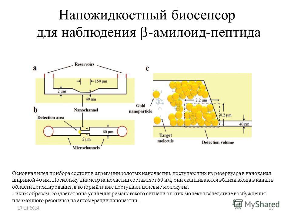 Наножидкостный биосенсор для наблюдения -амилоид-пептида 17.11.201415 Основная идея прибора состоит в агрегации золотых наночастиц, поступающих из резервуара в наноканал шириной 40 нм. Поскольку диаметр наночастиц составляет 60 нм, они скапливаются в