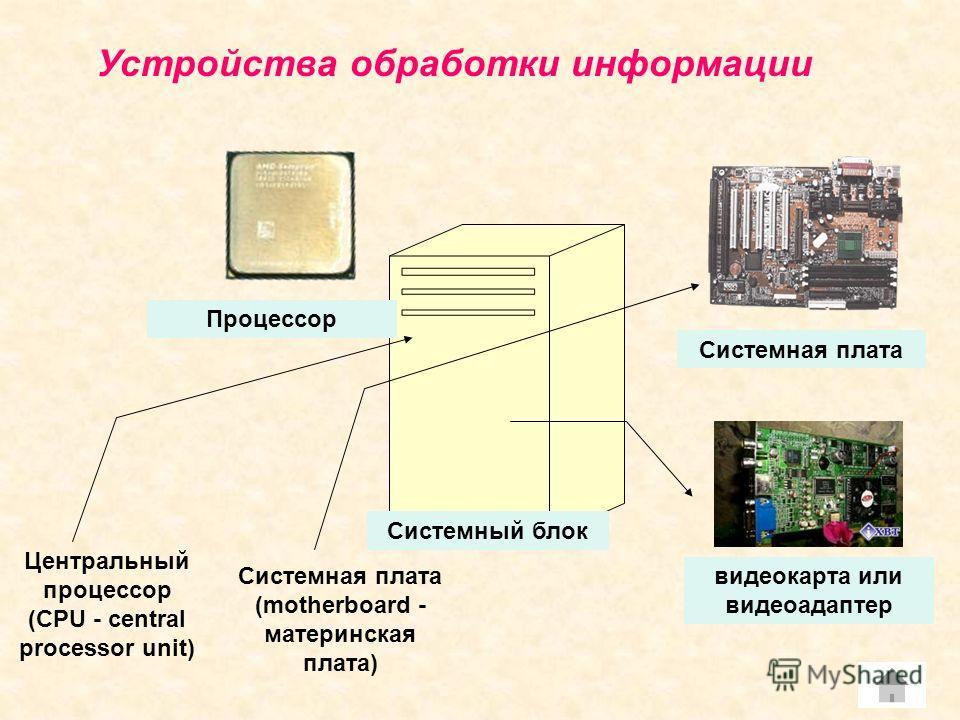 Устройства обработки информации Системный блок Процессор Центральный процессор (CPU - central processor unit) Системная плата (motherboard - материнская плата) Системная плата видеокарта или видеоадаптер