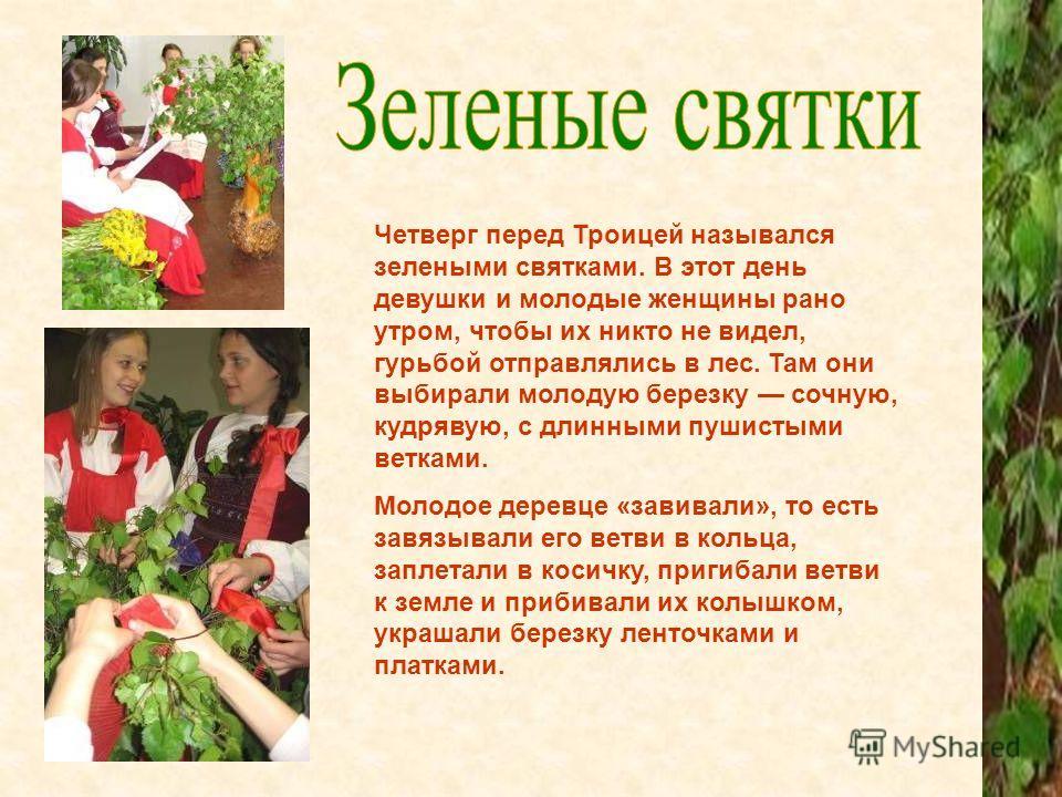 Четверг перед Троицей назывался зелеными святками. В этот день девушки и молодые женщины рано утром, чтобы их никто не видел, гурьбой отправлялись в лес. Там они выбирали молодую березку сочную, кудрявую, с длинными пушистыми ветками. Молодое деревце