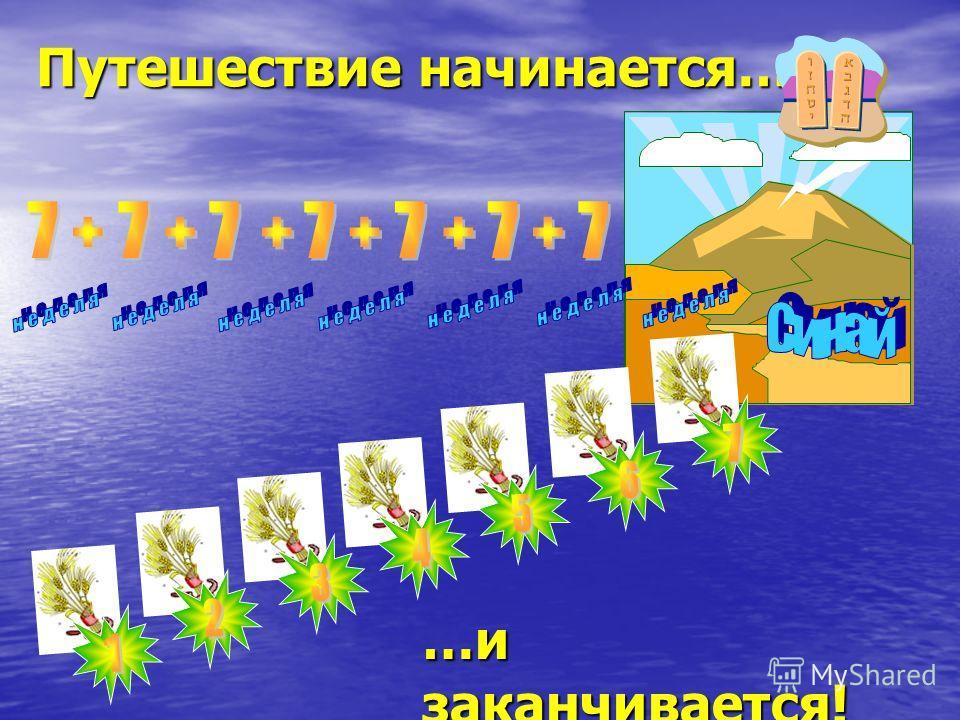 49 ступеней к горе Синай Праздничная викторина НОУ школа «Ор Авнер» Автор: Юлия Ларцева г. Самара, 2007 год