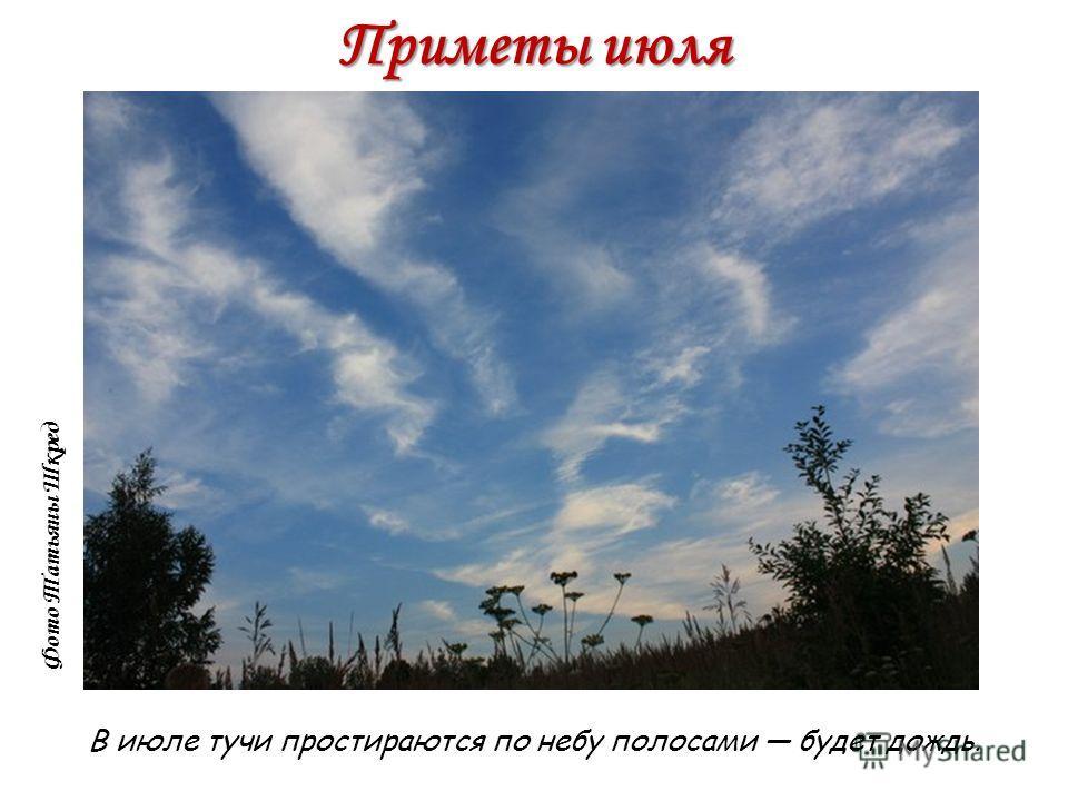 Приметы июля В июле тучи простираются по небу полосами будет дождь. Фото Татьяны Шкред