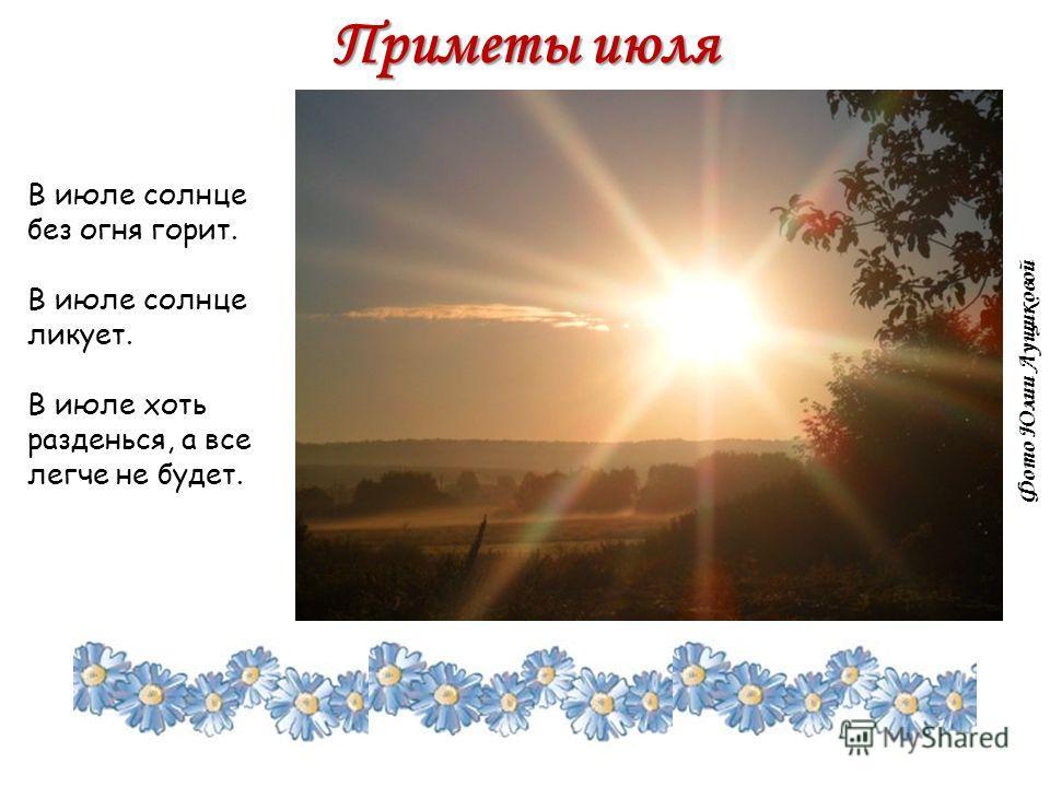 Приметы июля В июле солнце без огня горит. В июле солнце ликует. В июле хоть разденься, а все легче не будет. Фото Юлии Лущиковой