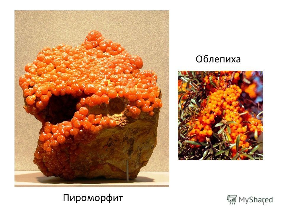 11 Пироморфит Облепиха