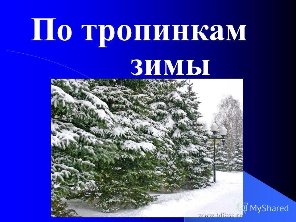 По тропинкам зимы