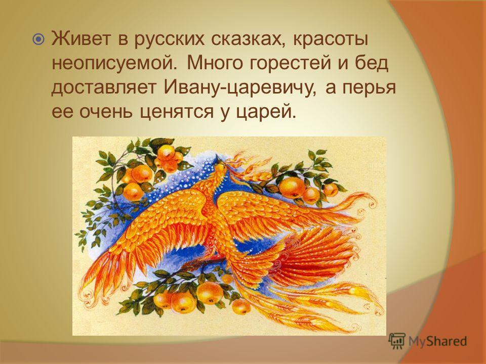 Живет в русских сказках, красоты неописуемой. Много горестей и бед доставляет Ивану-царевичу, а перья ее очень ценятся у царей.