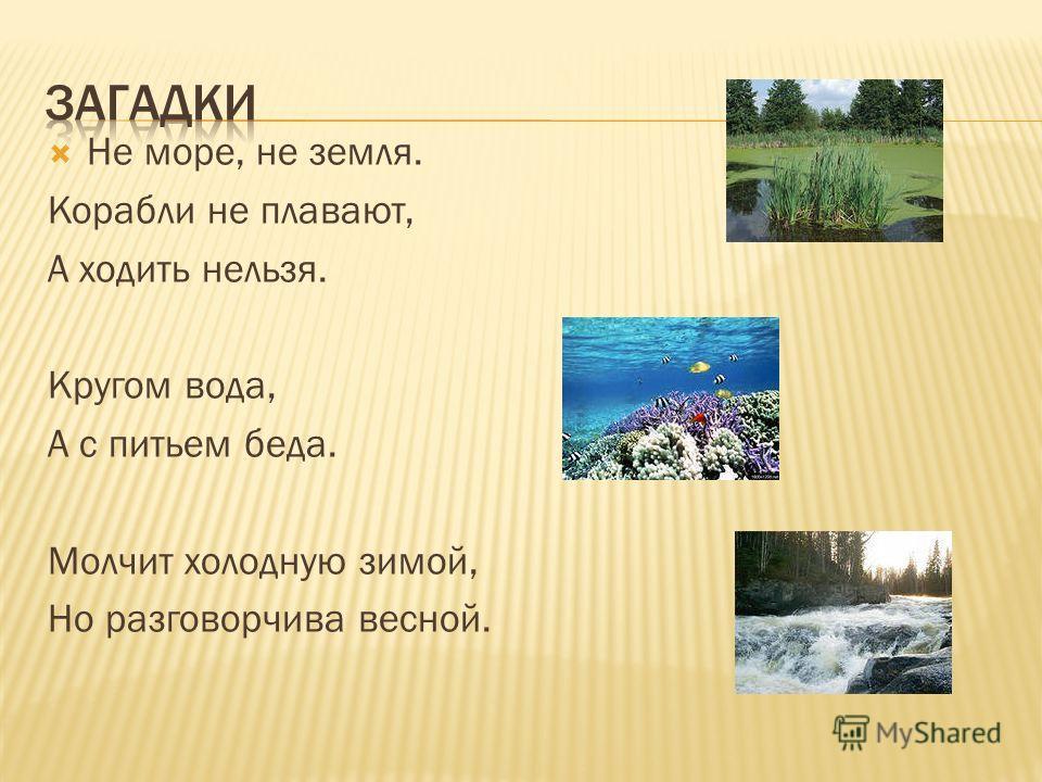 Не море, не земля. Корабли не плавают, А ходить нельзя. Кругом вода, А с питьем беда. Молчит холодную зимой, Но разговорчива весной.