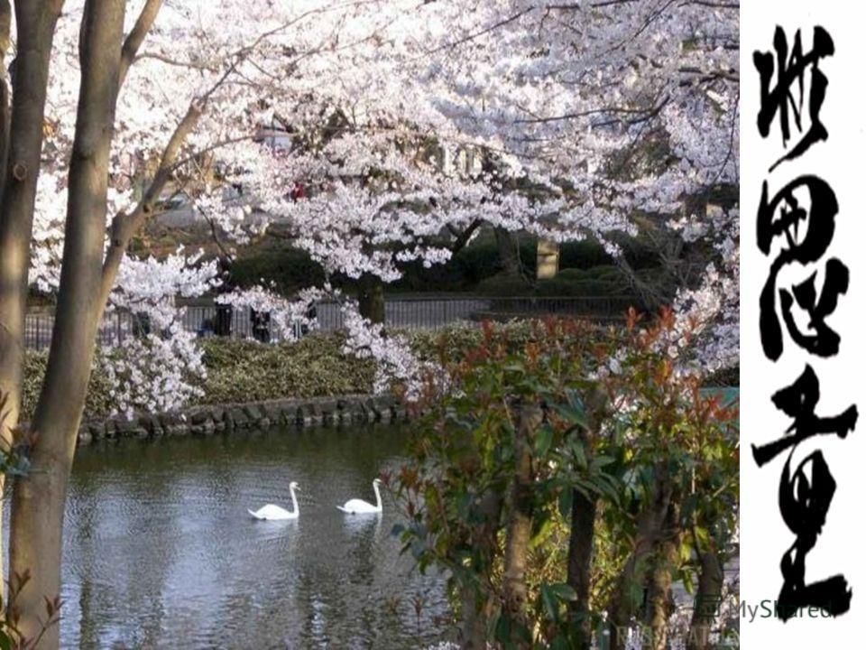 Японские поэты повторяют вновь и вновь: всматривайтесь в привычное – и увидите неожиданное, всматривайтесь в некрасивое – и увидите красивое, всматривайтесь в простое и увидите сложное. Увидеть прекрасное и не остаться равнодушным – вот к чему призыв