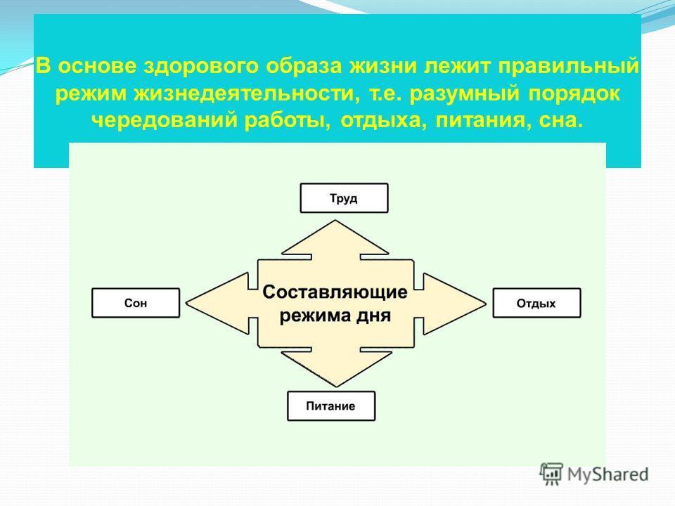 В основе здорового образа жизни лежит правильный режим жизнедеятельности, т.е. разумный порядок чередований работы, отдыха, питания, сна.
