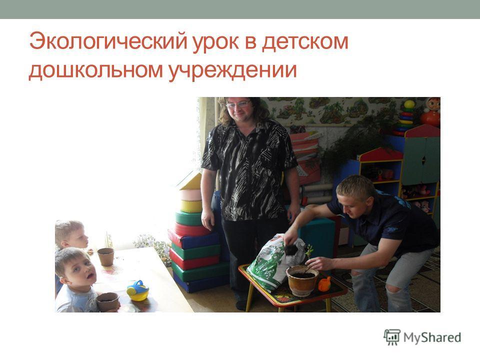 Экологический урок в детском дошкольном учреждении